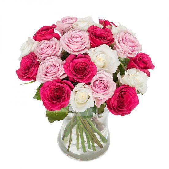 Искушение розы