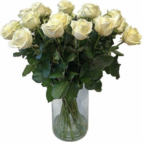 Средние белые розы